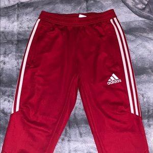 Red Adidas Trio 19 Pants